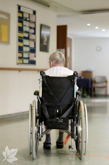 Cuidado de mayores y dependienes