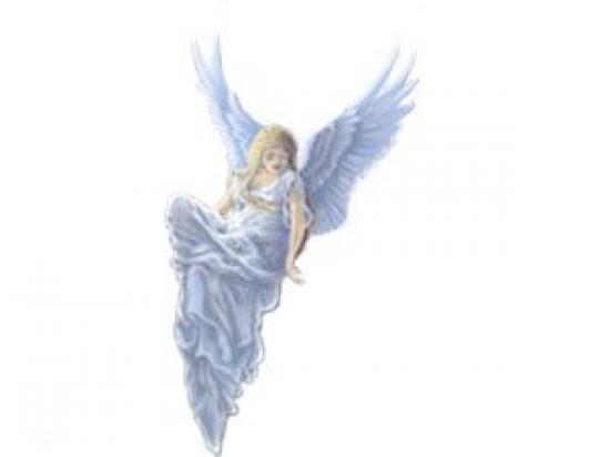 Mi Ángel de la Guarda, Ayuda a Domicilio