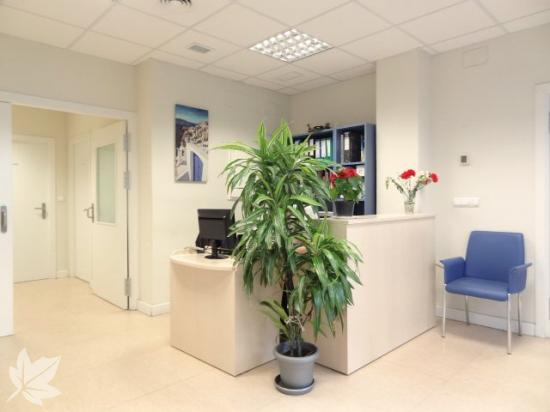 CITEA -  Centro de día especializado en Alzheimer
