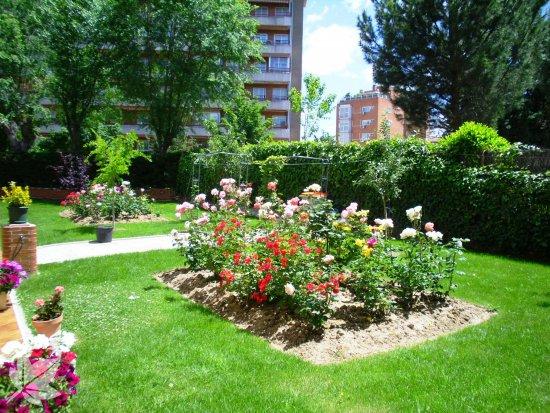 Residencias Geriatricas 3ª Edad LAS ROSAS Madrid