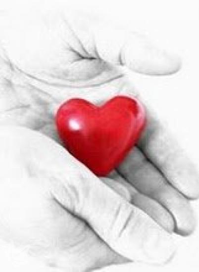 Ayuda a Domicilio y Cuidado de Ancianos en ALCAÑIZ