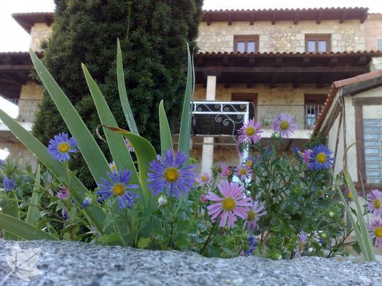 Centro de Turismo Rural San Pelayo
