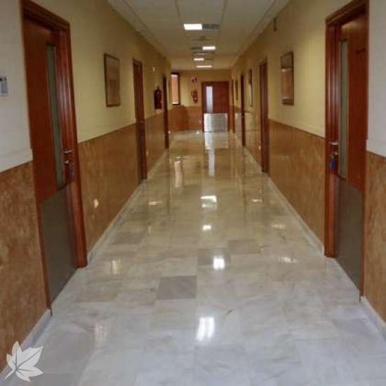 Residencia Asisttel-Aljarafe