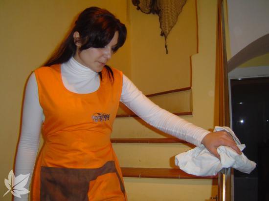 Oferim Serveis d'Ajuda a Domicili per a Gent Gran